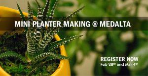 mini-planter-making_620x320